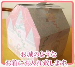 プリンセスケーキ誕生日