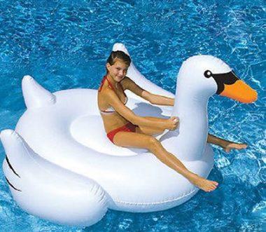 浮き輪子供白鳥